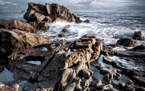 Fifth Place:  Alicia Warwick - Rock Pools at Heisler